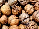 walnuts 1.9.15